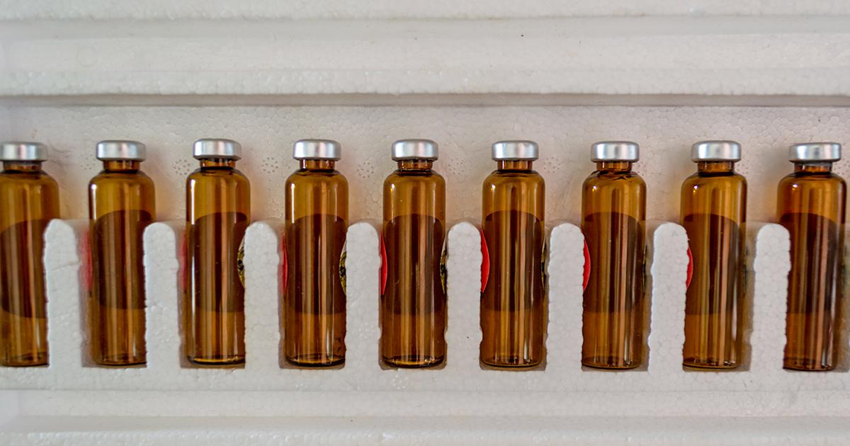contenitori in polistirolo per conservazione vaccino anticovid